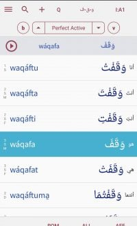The first app (Android/iOS) that really knows how to conjugate Arabic verbs 2